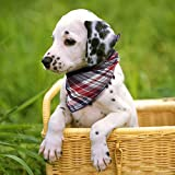 Dog Bandana,Leathlux [4 Pack] Cotton Plaid Machine Washable Triangle Bibs Scarfs Accessories Set for Small to Large Dog/Cat