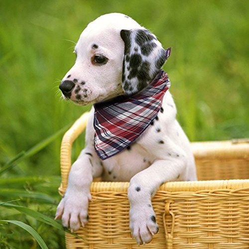 Dog-Bandana4-Pack-Cotton-Plaid-Machine-Washable-Triangle-Bibs-Scarfs-Accessories-Set-for-Small-to-Large-DogCat