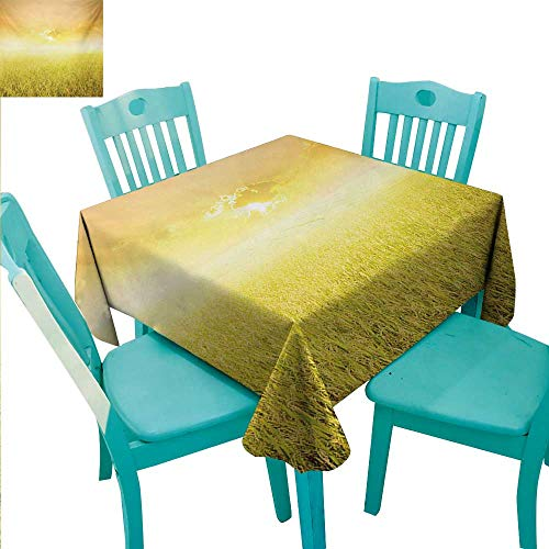 Yellow Square Polyester Tablecloth Rice Field Farm and Sunset Countryside Agriculture Sun Rays Evening Cloudscape Washable Polyester - Great for Buffet Table, Parties, Holiday Dinner, Wedding & More -