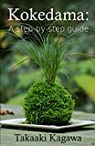 Kokedama: A step-by-step guide