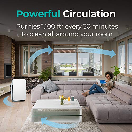 How Air Purifiers Will Help You