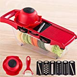julian chopper - Vegetable Chopper Slicer Dicer Cutter & Grater - 6 Interchangeable Blades with Peeler, Hand Protector,Storage Container - Cutter for Potato,Tomato, Onion