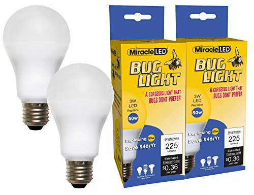 Low Watt Flood Light Bulbs