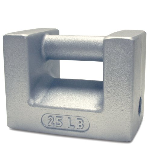 Rice Lake 12833 Cast Iron Painted Grip Handle Test Weight, 25lb Mass, NIST Class F by Rice Lake