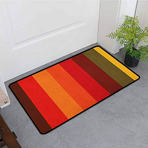 Anhounine Abstract Fashion Door mat Vertical Striped Color Bands Vibrant Tones Geometric Straight Lines Artful Design Hard and wear Resistant W35 x L47 Multicolor