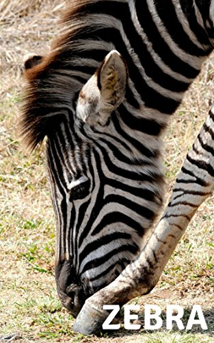 ZEBRA : PHOTO BOOKS for sale  Delivered anywhere in USA