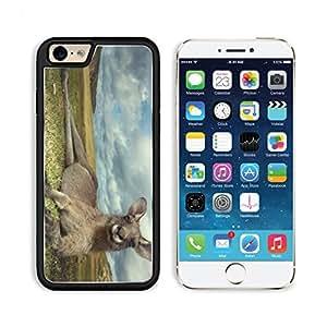 Kangaroo Cute Grassland Animal Sky Clouds Punktail's Collections iPhone 6 Cover Premium Aluminium Design TPU Case Open Ports