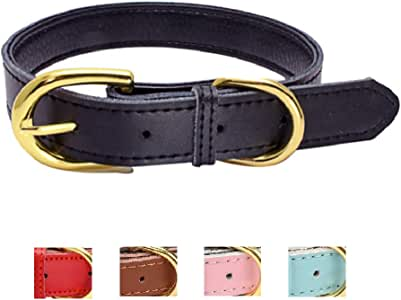 Ozpaw Padded Leather Dog Collar for Puppies Small Medium Dogs and Cats (Medium, Black)