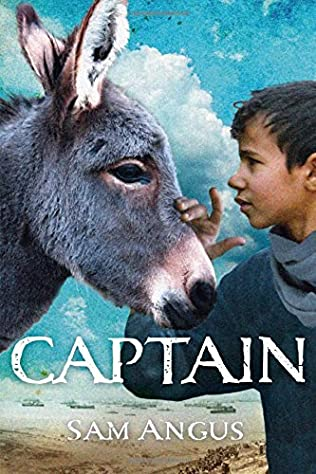 book cover of Captain