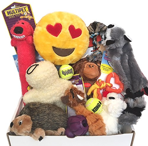 - ZamiZoo Woof! Doggie Gift Box, Play & Treat, For Small Size Dogs