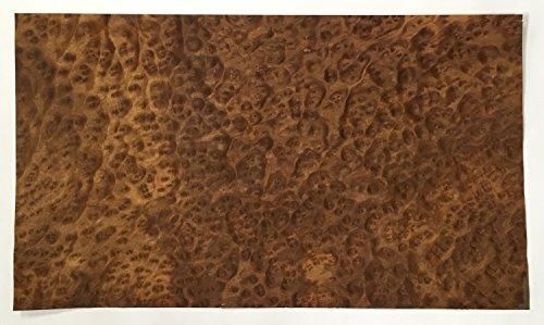Exotic Wood Veneer (Camphor Burl Veneer - 13