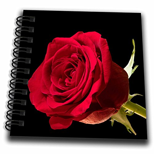 3dRose Sven Herkenrath Nature - Roses of Love Macro Photo for Valentine and Wedding - Mini Notepad 4 x 4 inch (db_280340_3) (Notepads Wedding)