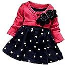 OURS Baby Girls Princess One Piece Flower Dot Dress