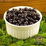 Frozen Wild Bilberries 4.5lbs