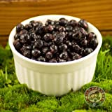 Fresh Frozen Wild Bilberries 4.5 lbs