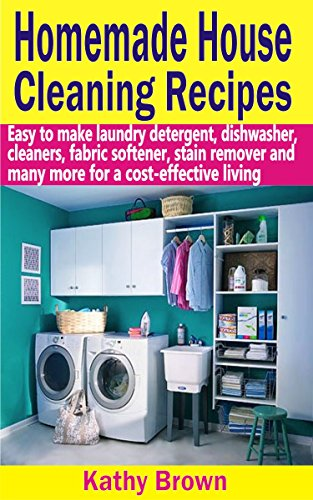 Homemade House Cleaning Recipes cost effective ebook product image