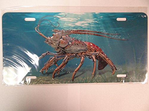 (Advanced Graphics T9453V Lobster on Sea Floor License Plate -)