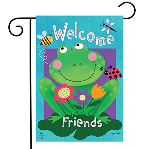 Briarwood Lane Welcome Friends Frog Summer Garden Flag Dragonfly Lilypad 12.5