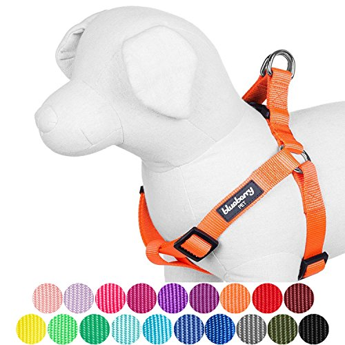 """Blueberry Pet 12 Colors Step-in Classic Dog Harness, Chest Girth 19.5"""" - 25.5"""", Florence Orange, S/M, Adjustable Harnesses for Dogs"""