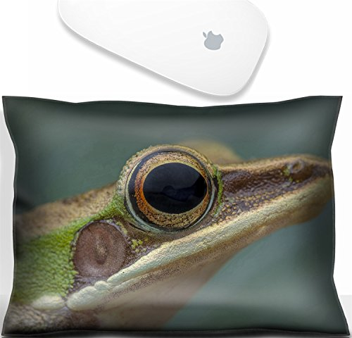 - Luxlady Mouse Wrist Rest Office Decor Wrist Supporter Pillow White lipped frog Hylarana labialis at the night.IMAGE: 27569868