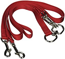 Pet Walker-Plus Pet Leash for Dog, Medium, Red