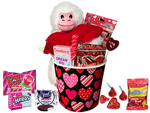 Valentines Day Gift for Kids Her and Him Valentines Gifts Basket for Kids All Premium Brand Name Chocolate and Sweets Gift Baskets