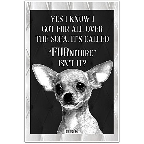 Chihuahua Dog Lover Wall Art Poster