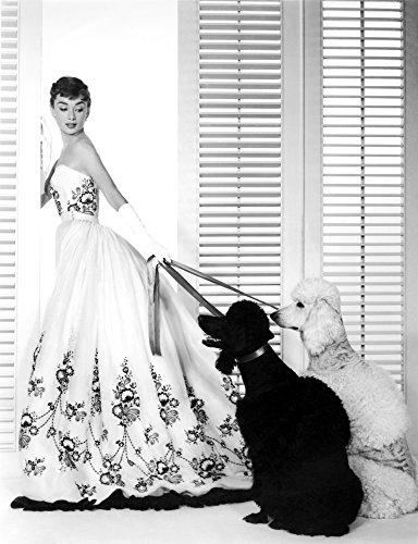 Sabrina Audrey Hepburn (Wearing A Givenchy Gown) 1954 Photo Print (8 x 10)