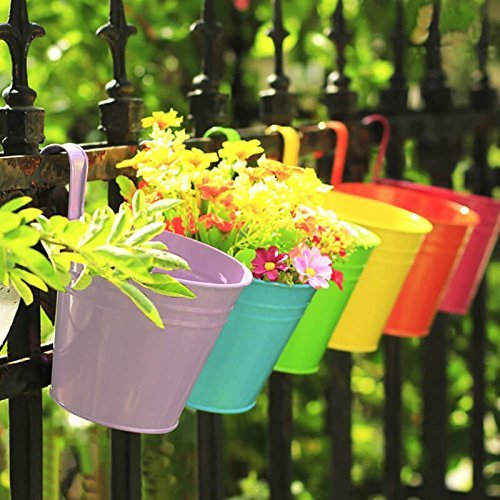KINGLAKE Flower Pots,10 Pcs Metal Iron Hanging Flower Plant Pots Balcony Garden Plant Planter Baskets Fence Bucket Pots 3.94'' Flower Holders with Detachable Hook ()