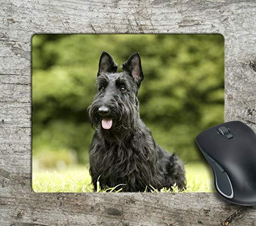 (Giant Schnauzer Fan Dog Computer Anti-Slip Mousepad Mouse Pad Mouse Mat Matt Pad)