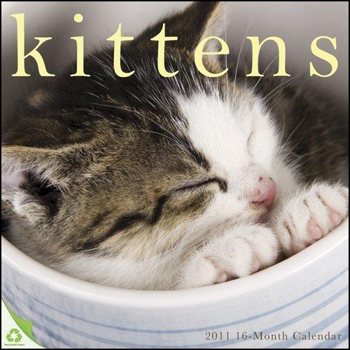 Kittens 2011 Wall Calendar ()
