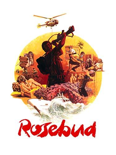 Rosebud - Otto Roses