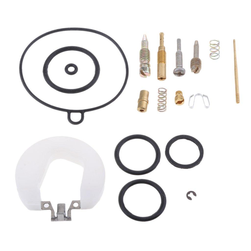 19 mm PZ19 Kit de Reconstrucci/ón Reparaci/ón de Carburador Para Atv Dirt Bike