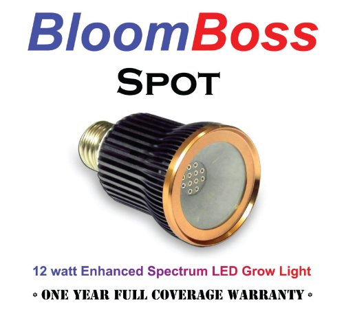 BloomBoss Spot LED Grow Light