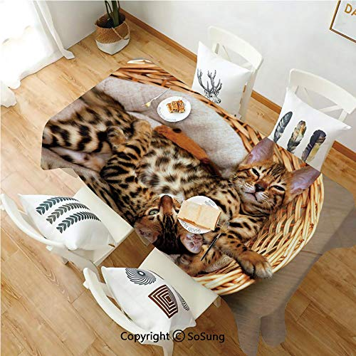 SoSung Kitten Rectangle Polyester Tablecloth,Little Bengal Cats in Basket Cuddly Purebred Kitties Domestic Feline,Dining Room Kitchen Rectangle Table Cover,52W X 72L inches,Brown Light Brown Beige
