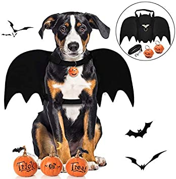 Amazon.com: Legendog - Alas de murciélago para perro ...