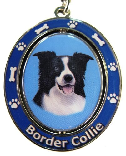 Border Collie Costumes (Border Collie Key Chain