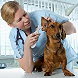 Pet Clinic Infrared Ear Thermometer for Dog