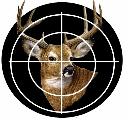 Deer In Target Car Magnet With Realistic Looking Deer Photograph In The Center Of A Target Covered In UV Gloss For Weather and Fading Protection Circle Shaped Magnet Measures 5.25 Inches Diameter