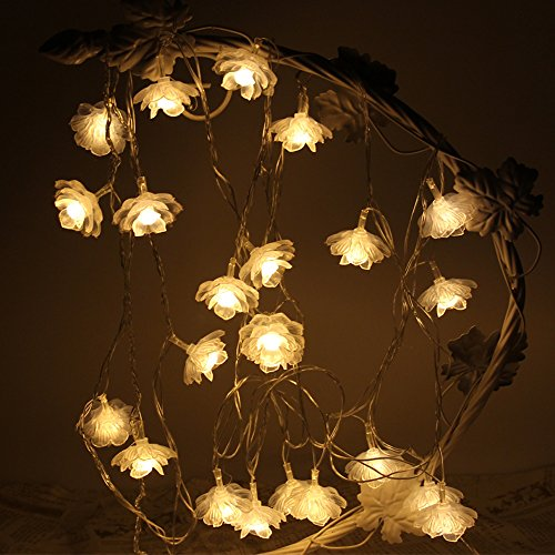 Pastel Led Lights - 7