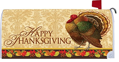 Thanksgiving turkey mailbox makover cover vinyl witn for Custom decor inc