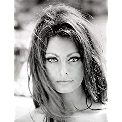 Sophia Loren Beautiful Face and Eyes Photo Art Hollywood Movie Star Photos Artwork 8x10