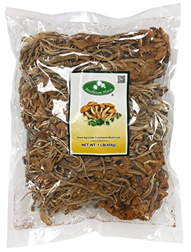 - Mushroom House Dried Mushrooms, Chestnut (Agrocybe cylindracea), 1 Pound