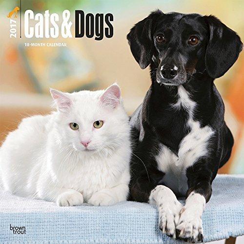 cats-dogs-2017-wall-calendar