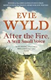 After the Fire by Evie Wyld