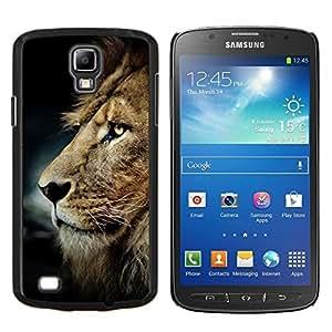 TECHCASE---Cubierta de la caja de protección para la piel dura ** Samsung Galaxy S4 Active i9295 ** --desordenado león melena de cabello castaño dorado