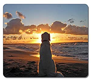 Brain114 Personalized Top-Quality Textured Surface Water Resistent Mousepad Dog Watching Sundown Customized Non-Slip Gaming Mouse Pads