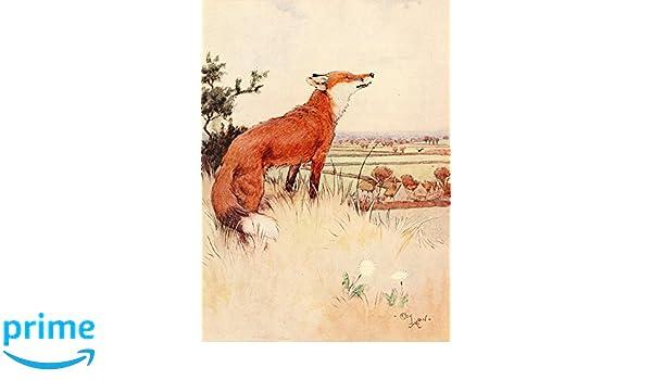 Cecil Aldin Dog White Ear /& Peter 1912 Art Repro Photo Print Picture No.2