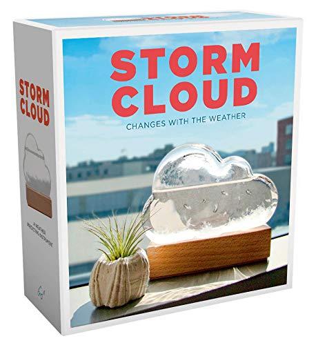 Storm Cloud: A Weather Predicting Instrument