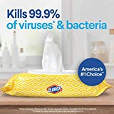 Clorox Disinfecting Bleach Free Cleaning Wipes
